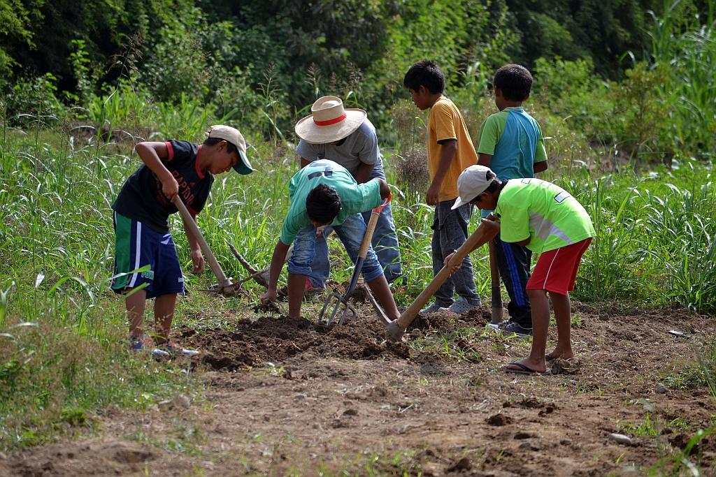 NPH Peru_2018_Farm_31